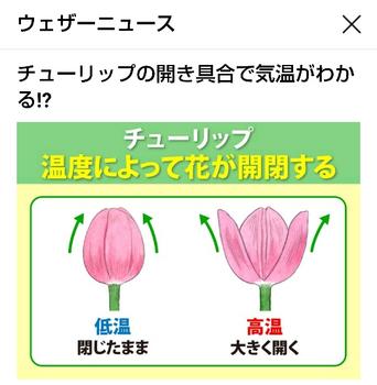 Screenshot_20190417-112336_crop_540x552.png